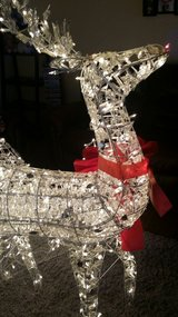 Lighted reindeer with sleigh in Oswego, Illinois