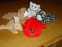 5 beanbag animals in Bolingbrook, Illinois