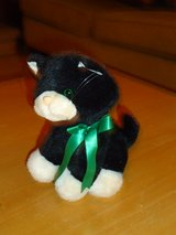 "cute stuffed 8"" kitten in Oswego, Illinois"