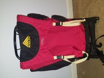 Kelty jr Tioga 2000 external frame backpack in Naperville, Illinois