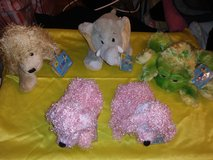 Webkinz and Lil' Kinz Collection #2 in The Woodlands, Texas