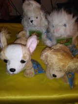 Webkinz by Gant. Collection #4 in The Woodlands, Texas