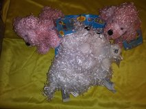 Webkinz and Lil' Kinz Collection# 5 in The Woodlands, Texas