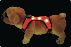 LED Dog Harness Free Shipping in Los Angeles, California