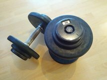 Dumbbells 30 pound's in Ramstein, Germany