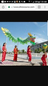 GREEN CHINESE DRAGON DANCE Festival Costume in Wilmington, North Carolina