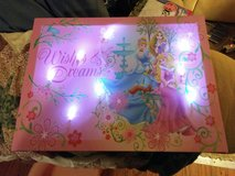Light up Princess picture in Fort Campbell, Kentucky