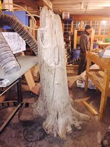 Large Size Sculptural Driftwood in Fort Wayne, Indiana