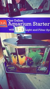 1 Gallon fish tank and food in Naperville, Illinois