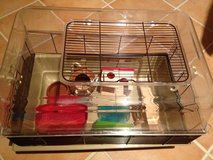 Hamster Cage in Ramstein, Germany