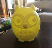 Owl Night Light in Naperville, Illinois