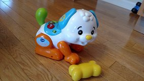 VTech Shake and Sounds Learning Pup in Sandwich, Illinois
