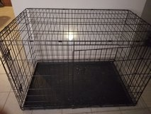 Large dog crate in Aurora, Illinois
