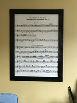 Large laminated framed picture in Aurora, Illinois