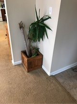 Solid wood plant holder in Fort Polk, Louisiana