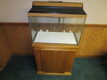 20 gallon aquarium with base cabinet in Plainfield, Illinois