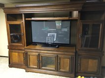 Entertainment media center in St. Charles, Illinois
