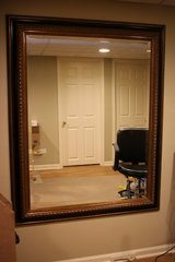 Large Mirror in Elgin, Illinois