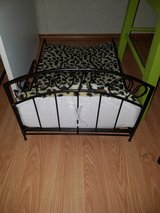 Pet bed in Fort Campbell, Kentucky