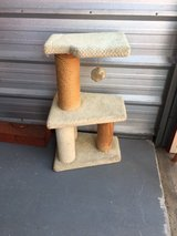 cat tree in Joliet, Illinois