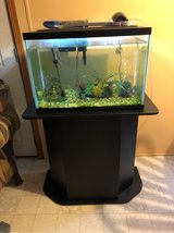 20gallon fish tank all included in Oswego, Illinois