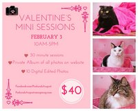 Valentine's Mini Sessions in Macon, Georgia
