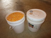 5 GALLON BUCKETS OF FEED CORN in Joliet, Illinois