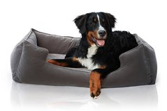 Petsbao Premium Orthopedic Dog Bed & Lounge with Solid Memory Foam-Large in Glendale Heights, Illinois