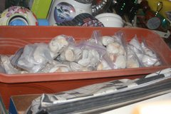 Bags of sea shells(price lowered) in Fort Leonard Wood, Missouri