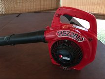 RedMax 2-Cycle Gas Leaf Blower in Spring, Texas