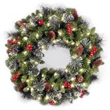 "24"" Crestwood Spruce National Tree Pre-Lit Christmas Wreath in Naperville, Illinois"