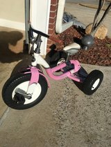 Trek tricycle in Warner Robins, Georgia