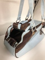 Blue pet carrier in Yucca Valley, California