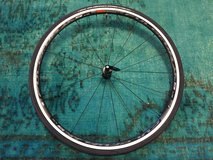 Brand New Fulcrum Racing 5 LG 10/11 speed bicycle wheels with Vittoria Pro Rubino 25c tires in Okinawa, Japan