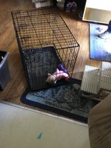 Dog Kennel in Fort Campbell, Kentucky