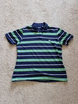 Blue Striped CHAPS Polo Shirt in Camp Lejeune, North Carolina