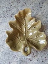 Green fall leaf dish in Plainfield, Illinois