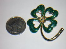 shamrock pin in Naperville, Illinois