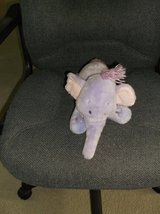 Purple Elephant Beanie in Glendale Heights, Illinois