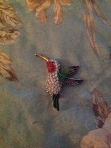 Hummingbird Broach in Kingwood, Texas