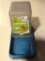 Small pet water feeder in Ramstein, Germany
