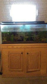 90 gallon aquarium with accessories in Sandwich, Illinois