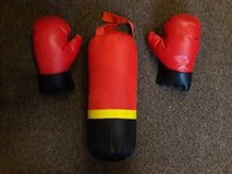 punching bag and gloves in Lakenheath, UK