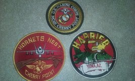 Hornets nest/ harrier, patches in Cherry Point, North Carolina