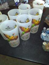 Frosted pheasant glasses in Travis AFB, California