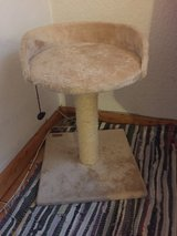 Cat Tree/Scratching Post in Ramstein, Germany