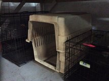 dog cages in Beaufort, South Carolina
