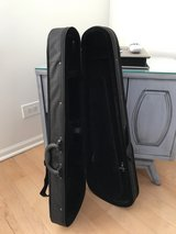 Violin case in Naperville, Illinois