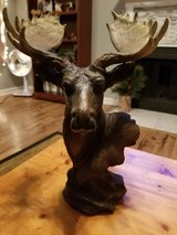 Moose head decoration in Fort Campbell, Kentucky