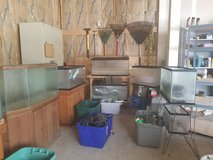HUGE COLLECTION OF AQUARIUMS (FISH TANKS) AND SUPPLIES! in Yorkville, Illinois
